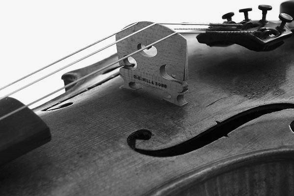 violinbridge