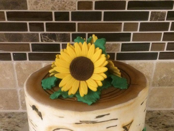 Tmx 1508115148524 Img9593 Osseo, MN wedding cake