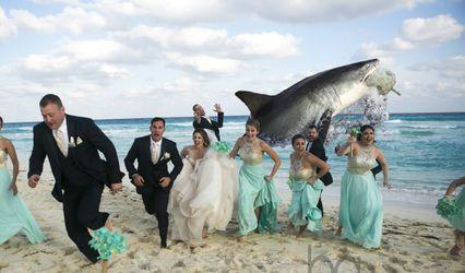 Bryan Anderson Weddings