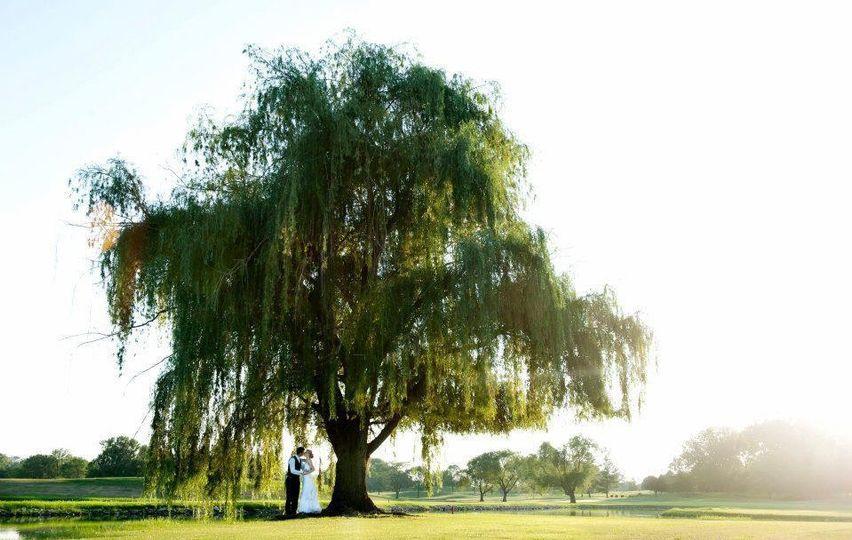 Kiss beneath the willow tree