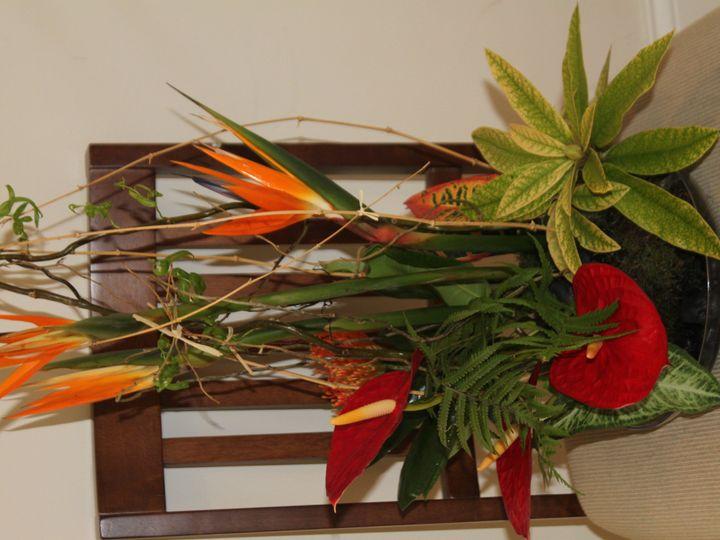 Tmx 1419341255136 Img3472 Purcellville, VA wedding florist