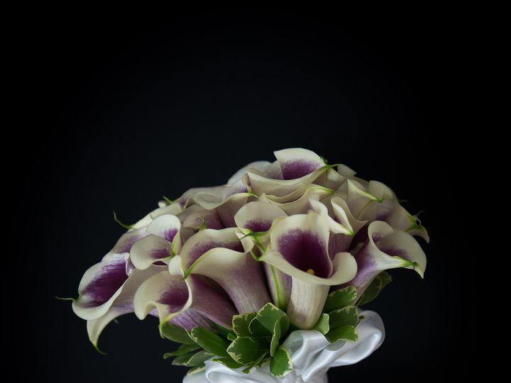 Tmx 1418178414769 Anjulans 14 2 Rehoboth wedding florist