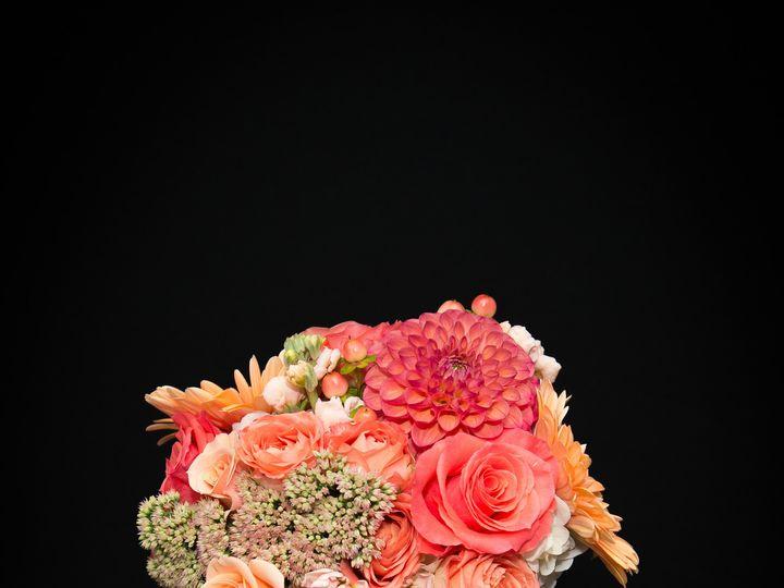 Tmx 1443562248890 Anjulans2015.weddings 6 Rehoboth wedding florist