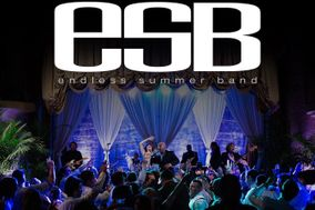 ESB (Endless Summer Band)