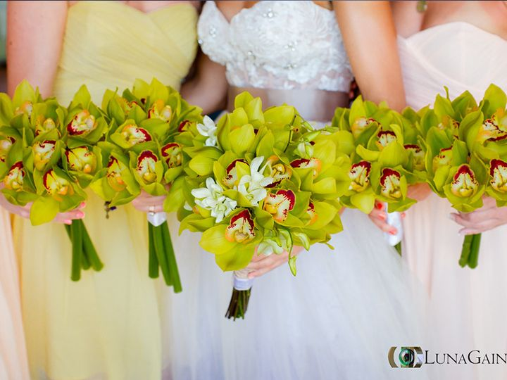 Tmx 1426567404359 Flores Santa Cruz Huatulco CP wedding photography