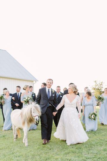 Equestrian Wedding Venue TX