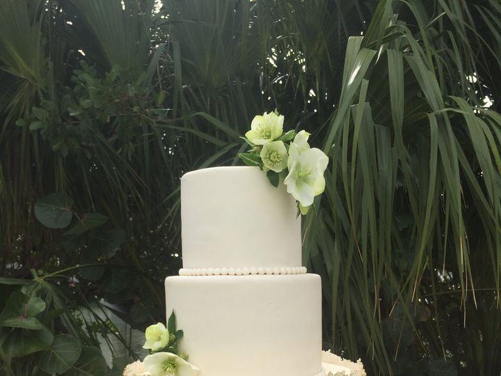 Tmx Img 0059 51 941272 Saint Petersburg, FL wedding cake