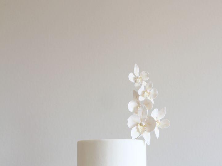 Tmx Img 5423 2 51 941272 Saint Petersburg, FL wedding cake