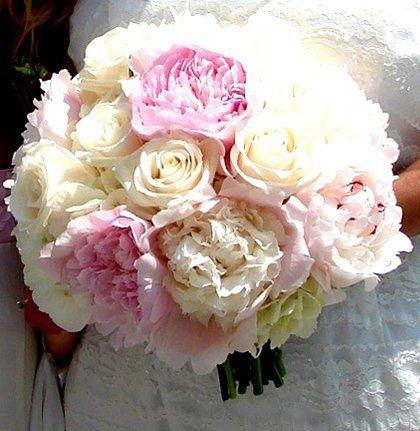 Tmx 1360271363302 Peoniebqt North Falmouth wedding florist