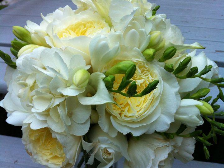 Tmx 1360271485051 Hydrangeadavidaustinrosesfreesia North Falmouth wedding florist
