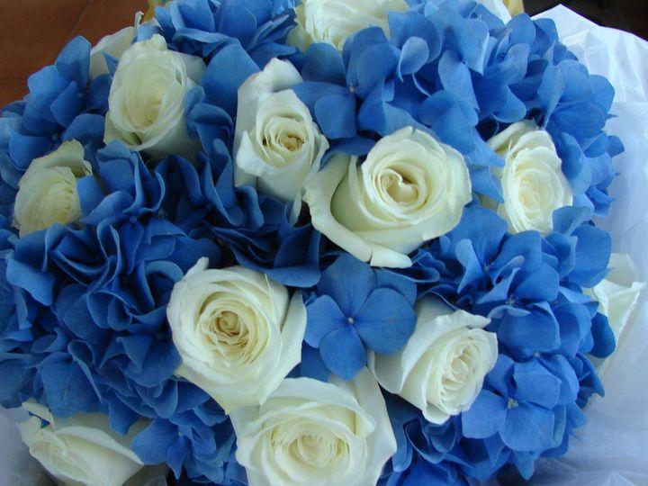 Tmx 1360271955539 Dkbluehydrangeaandwhroses North Falmouth wedding florist