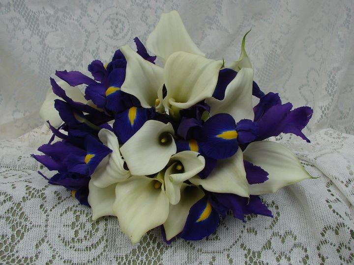 Tmx 1360271994914 WhiteCallaliliesandpurpleIris North Falmouth wedding florist