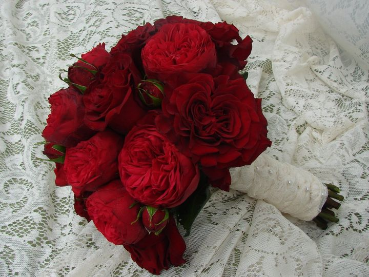 Tmx 1360272081097 BridesRedDavidAustinRoses North Falmouth wedding florist