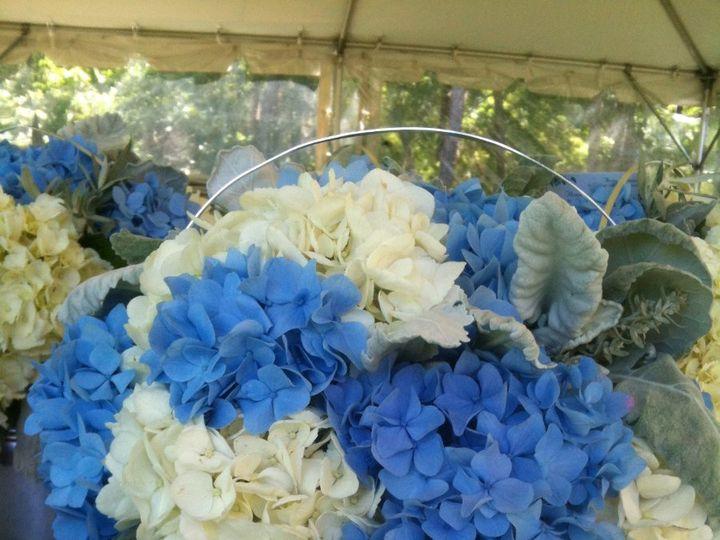 Tmx 1360273234307 Tinofbluewhitehydrangea North Falmouth wedding florist