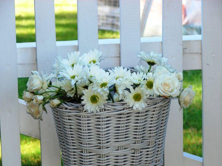 Tmx 1360273507223 BasketofDaisiesforfence North Falmouth wedding florist