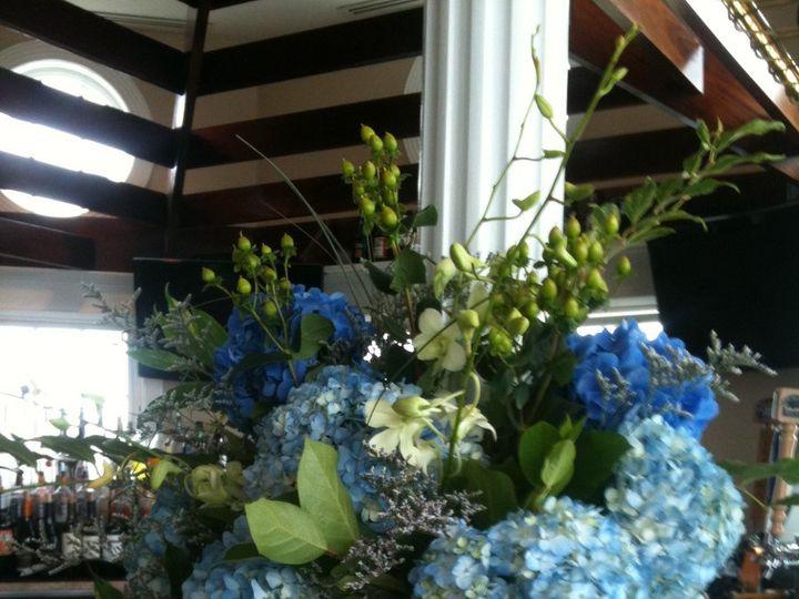 Tmx 1360273677169 VaseofHydgraneawithnetstarfish North Falmouth wedding florist