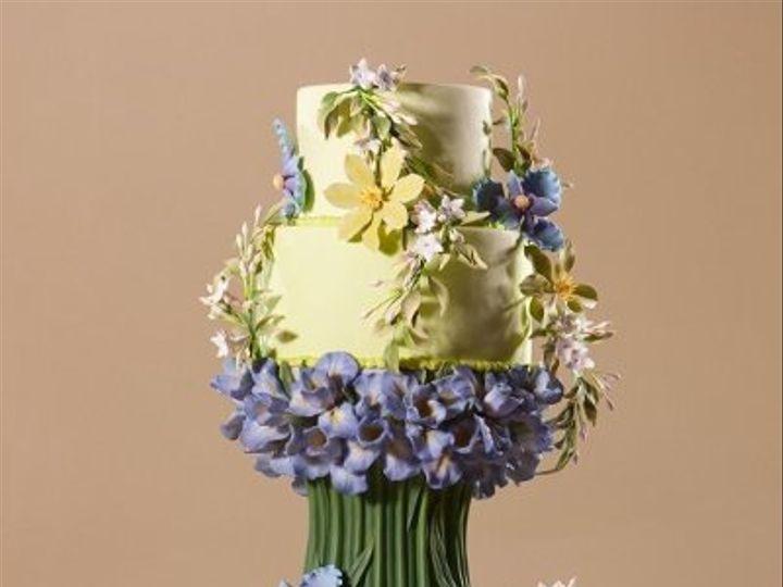 Tmx 1293648488235 1 Chapel Hill wedding cake
