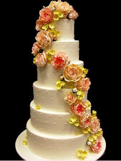 Tmx 1337712973980 Cake1060 Chapel Hill wedding cake
