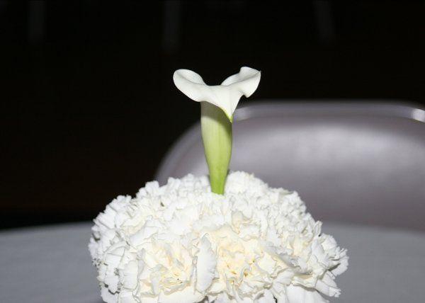 Tmx 1204920310128 Pc008 Grandview wedding officiant