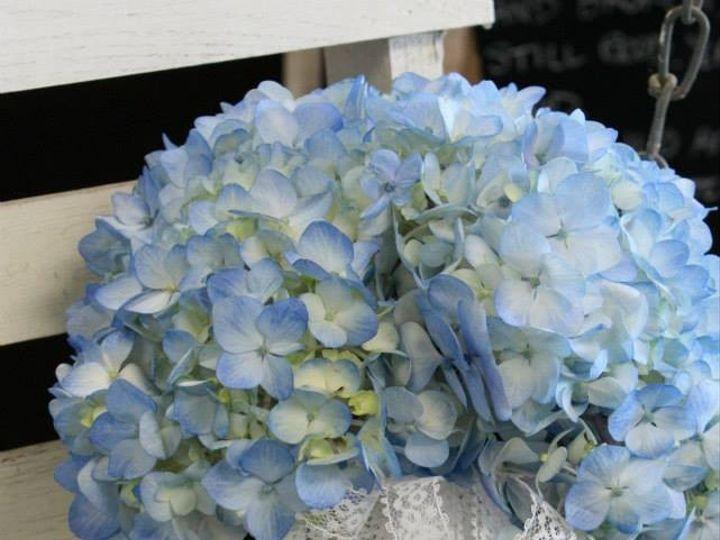 Tmx 1380133657864 Vintage17 Greensboro, North Carolina wedding florist