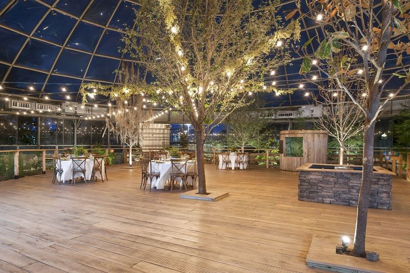 Arboretum event at night