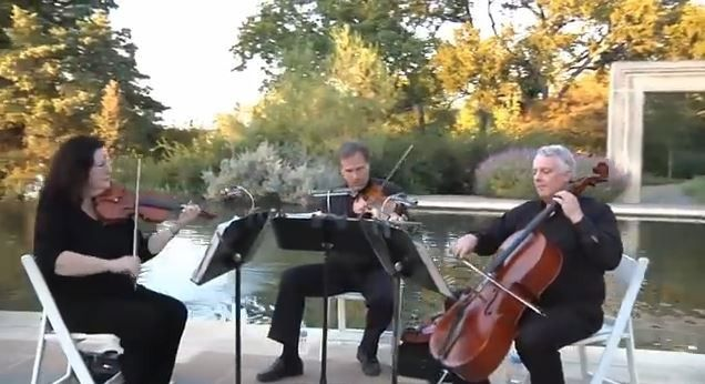 Tmx Arboretum Bridal Stroll 2 51 11472 157952831820974 Fort Worth wedding ceremonymusic