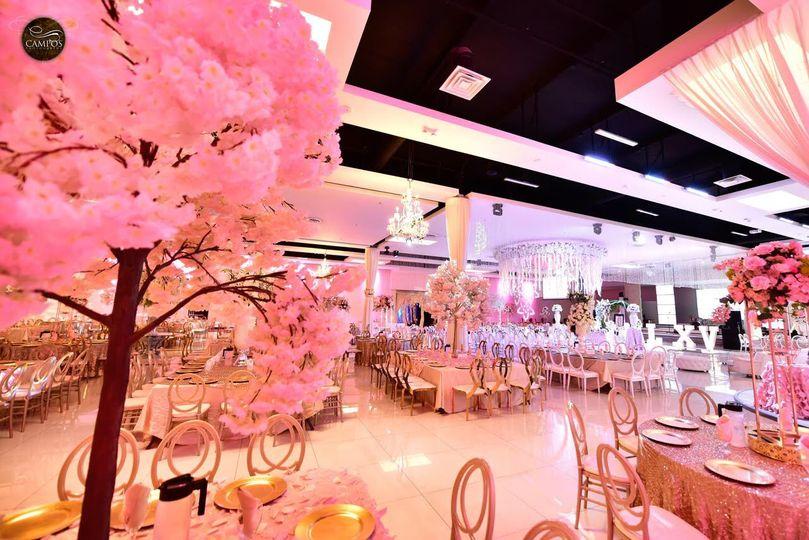 Ballroom Pretty in Pink