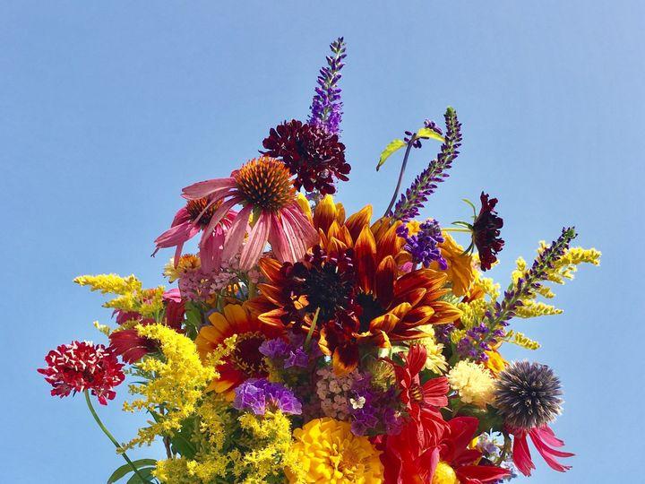 Tmx 1510160888422 Img9693 Ferrisburgh wedding florist