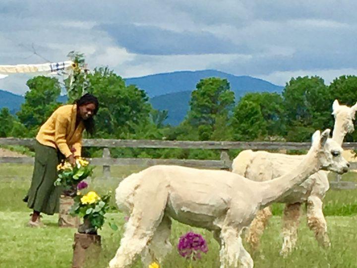 Tmx 1510186476510 Img7272 Ferrisburgh wedding florist