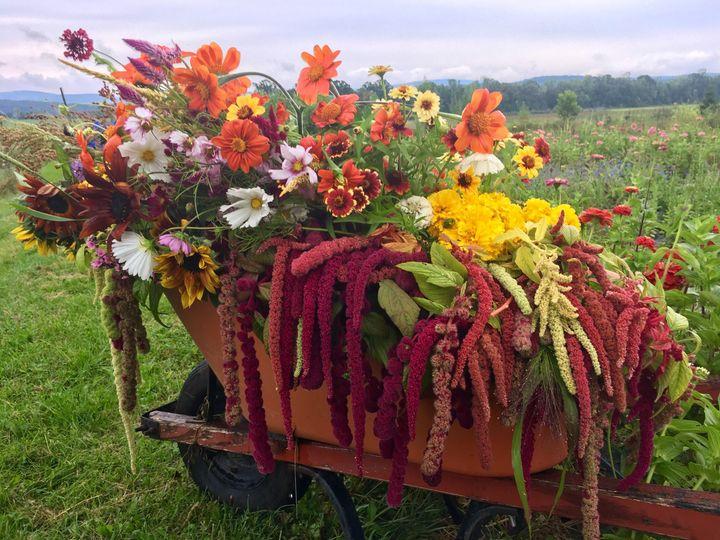 Tmx 1510187618370 Img9425 Ferrisburgh wedding florist