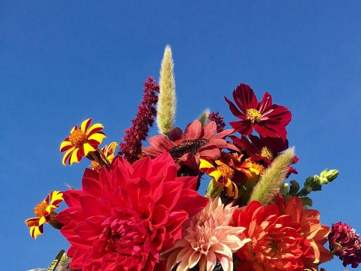 Tmx 1510360402022 Img9844 Ferrisburgh wedding florist