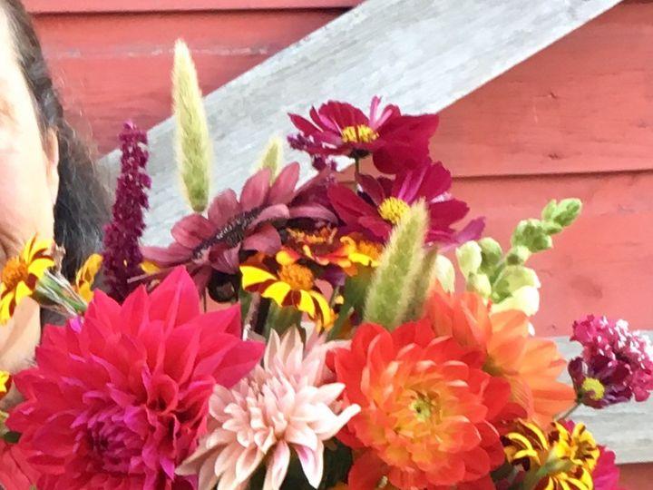 Tmx 1510360494704 Img9845 Ferrisburgh wedding florist