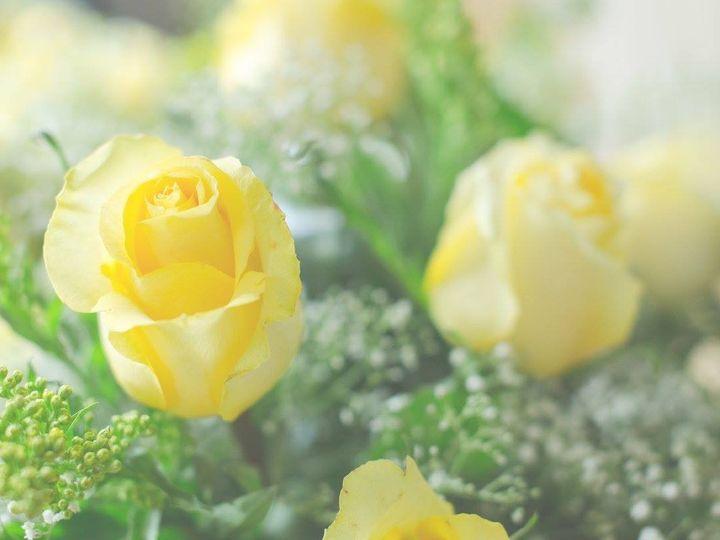 Tmx 1482435309565 Yellowroses Newark wedding florist