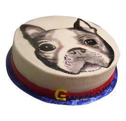 Tmx 1286686036612 Dogs La Jolla wedding cake