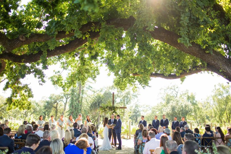 Ceremony under the old oaktree