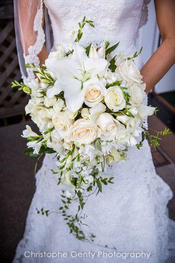 Tmx 1396566256050 Beazley House Wedding Photography 001 Napa wedding planner