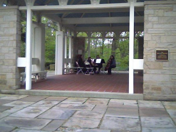 The Harmony Strings Quartet played under the Kidston Pavillion for Holly and Jimmy's wedding.