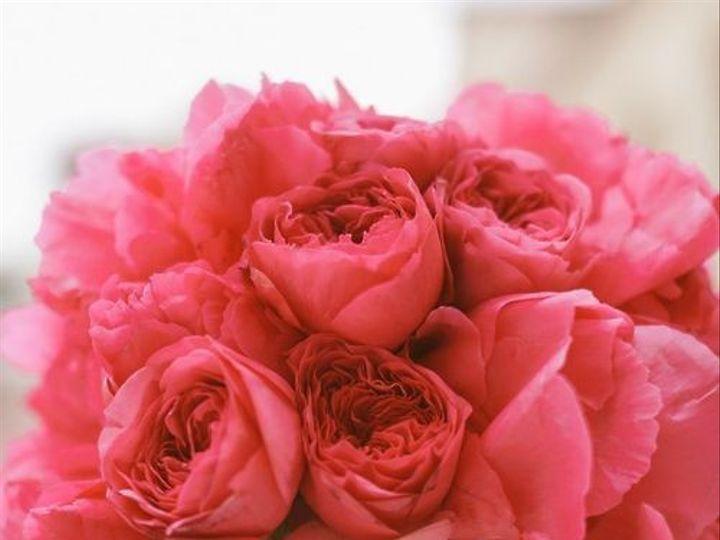 Tmx 1421294595958 6.12.1 Cary, NC wedding florist