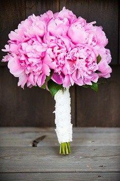 Tmx 1421294858705 6.12.4 Cary, NC wedding florist