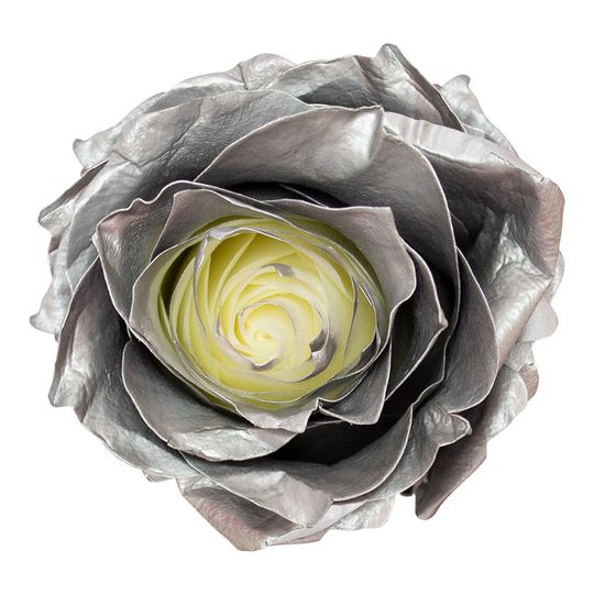 Silver airbrushed roses