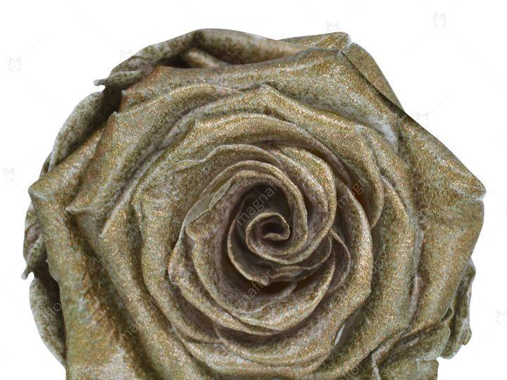 Tmx Bronze Glitter Premium Class 51 932572 Fort Lauderdale, FL wedding florist