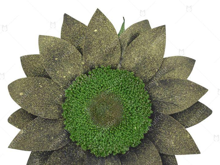 Tmx Brown Sunflower 51 932572 Fort Lauderdale, FL wedding florist