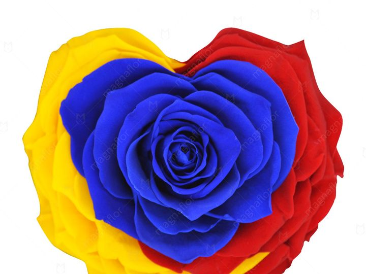 Tmx Colombia Shape Of Love 51 932572 Fort Lauderdale, FL wedding florist