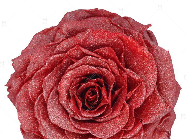 Tmx Dark Red Glitter Premium Class 51 932572 Fort Lauderdale, FL wedding florist