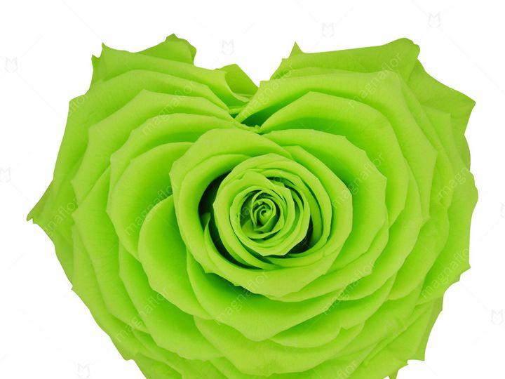 Tmx Green Shape Of Love 51 932572 Fort Lauderdale, FL wedding florist