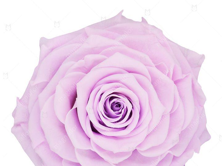 Tmx Lavander Sweet Sensation 51 932572 Fort Lauderdale, FL wedding florist