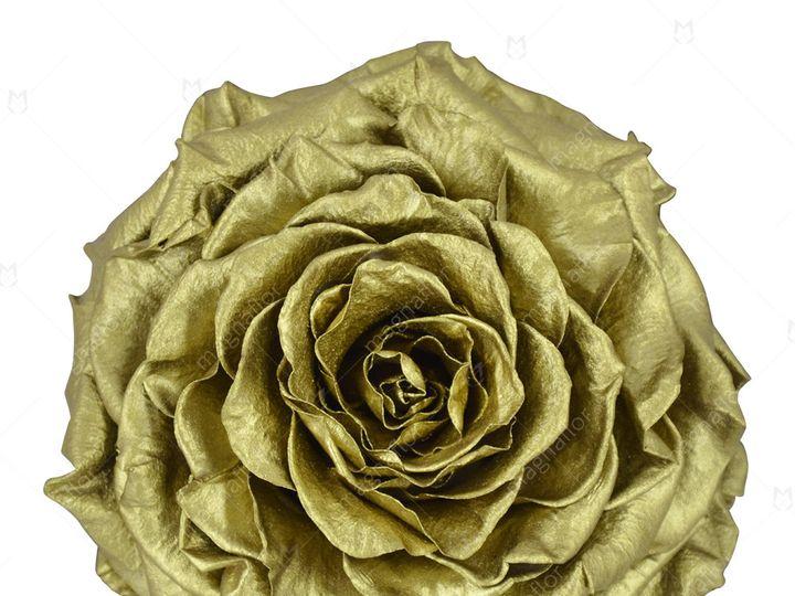 Tmx Metallic Golden Premium Class 51 932572 Fort Lauderdale, FL wedding florist