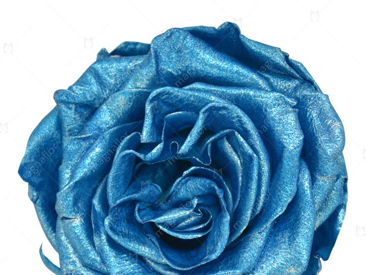 Tmx Metallic Turquoise Premium Class 51 932572 Fort Lauderdale, FL wedding florist