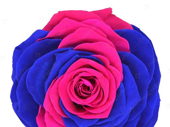 Tmx Pure Passion 1 51 932572 Fort Lauderdale, FL wedding florist