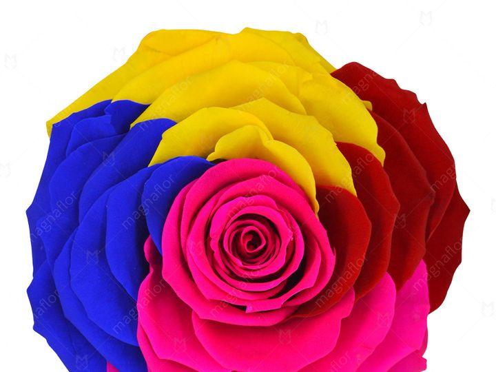 Tmx Pure Passion 4 51 932572 Fort Lauderdale, FL wedding florist